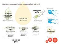 Спермограмма общая